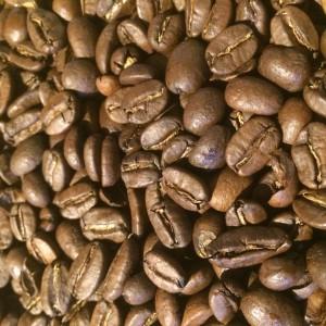 Earth coffee bio